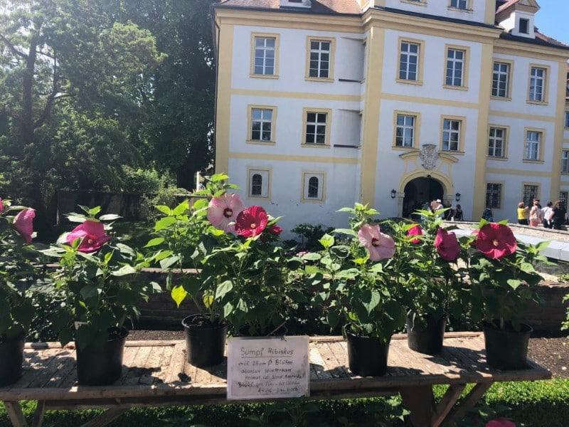 Gartenlust Köfering